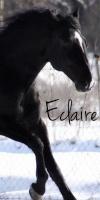 Eclaire